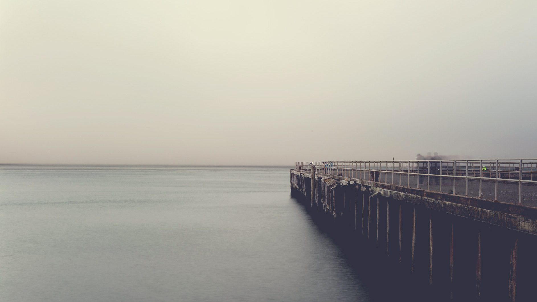 The Pier, the Birds and the Moment